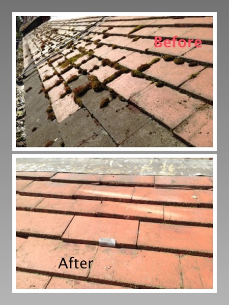 Moss Removal and Roof repair