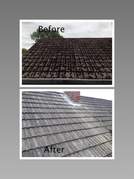 Moss removal and treatment roof